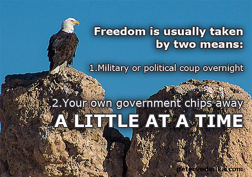 Book Peter Vodenka - Eagle Freedom Excerpt